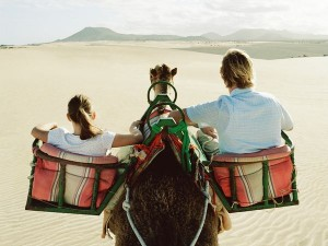 columns-insider-double-camel-ride_33774_600x450